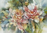 Watercolor Peony Particles